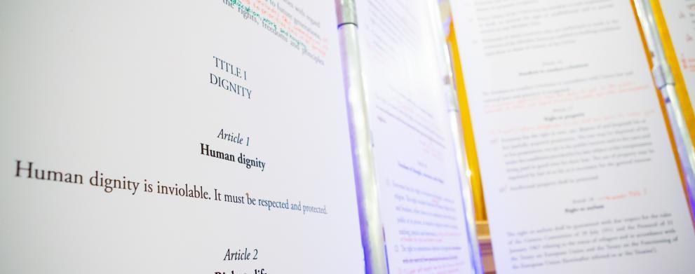 Cartei drepturilor fundamentale a UE